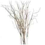 Willow Stem - Ask about price