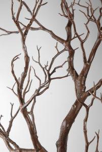 Manzanita branches (tan/brown) - Ask about price