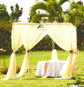 Canopy (4 post) with drapes - Estimated $3500. Request quotation based on size needed.